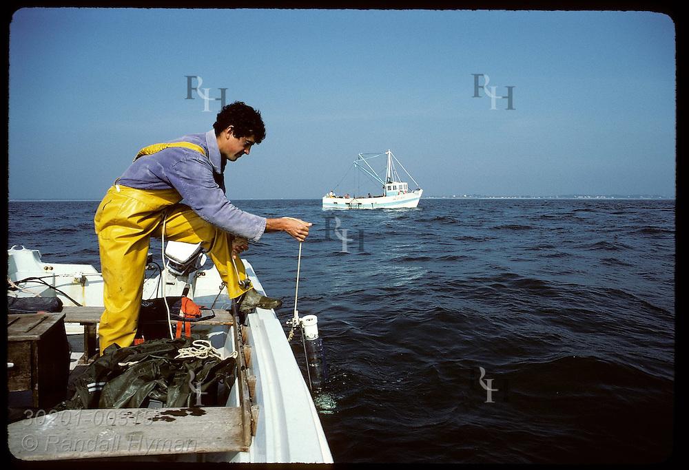 IFREMER biologist Jean Pierre Allenou tests sea for red tide; note Le Loch dredging in bkgrnd. France