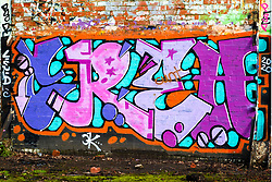 Graffiti on a derelict Industrial site between Ecclesfield and Meadowhall, just off the Trans Pennine Trail<br /> <br /> 17 January 2020<br /> <br /> www.pauldaviddrabble.co.uk<br /> All Images Copyright Paul David Drabble -<br /> All rights Reserved -<br /> Moral Rights Asserted -