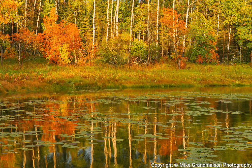 Autumn reflection on Middle Lake<br />Kenora<br />Ontario<br />Canada