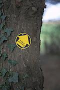 Public footpath arrow sign on tree