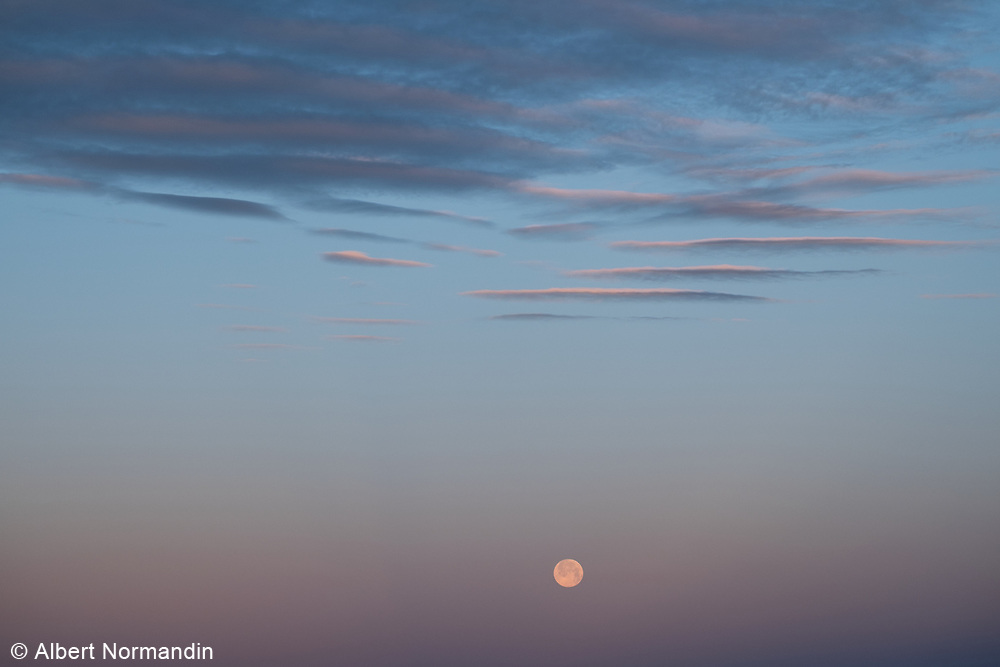 Full Strawberry Moon setting over Vancouver Island and Straight of Georgia, BC