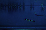Synchronized swimmers glide through the waters of the King County Aquatic Center during a competition. Many people find a joyful escape from everyday life while swimming and diving.<br /> <br /> Erika Schultz / The Seattle Times