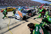 May 5-7, 2013 - Martinsville NASCAR Sprint Cup. Dale Earnhardt Jr., Chevrolet <br /> Image © Getty Images. Not available for license.