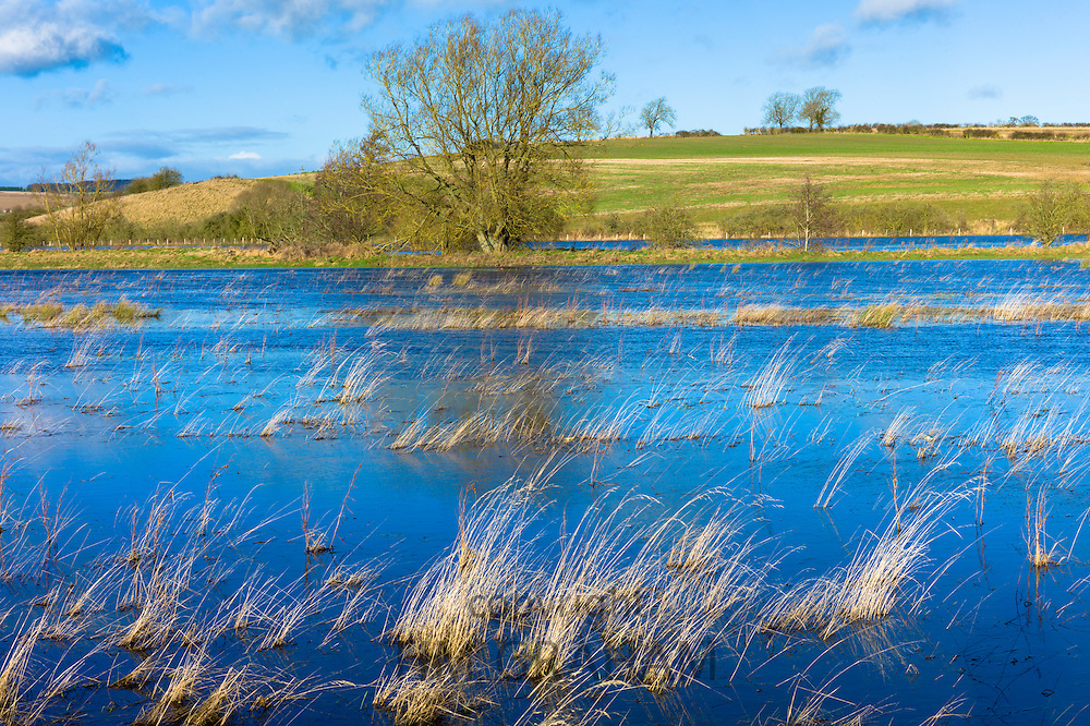 Flooded fields as the River Windrush burst its banks after heavy rain at Burford in The Cotswolds, Oxfordshire, United Kingdom