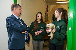 Pictured: Kieth Brown meets Zoe White holding Zak rgw Chinchilla and Kirsty McGoff holding Edgar the Ferre<br /> <br /> Cabinet Secretary for Economy, Jobs & Fair Work Keith Brown visited Gorgie City Farm today  to mark their accreditation as the 800th Living Wage employer in Scotland. Mr Brown met Josiah Lockhart, CEO and undertook a short tour of the farm, celebrating their accreditation and promoting the Living Wage more generally. The Scottish Government has set a target of reaching 1,000 Scottish-based Living Wage Accredited Employers by autumn 2017. While at the farm Mr Brown met Maia Gordon, Kirsty McGoff (17) and Zoe White (18), who have benefited from the living wage, and George Ellis, chair of the farm's board of directors<br /> Ger Harley   EEm 18 May 2017