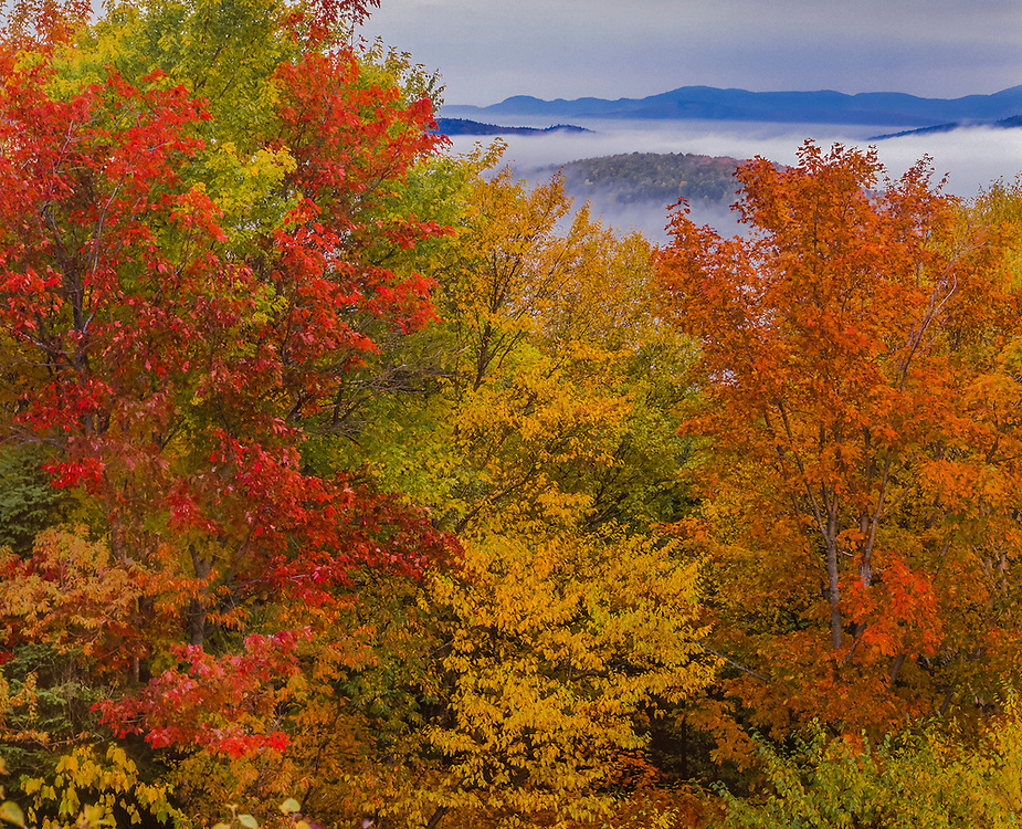 Fall color maples on hill, distant mountains & rising fog, Rangely, ME