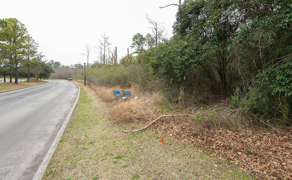Site of proposed relief elementary school on Old Farm Road, February 6, 2014.