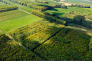 Nederland, Gelderland, Gemeente Geldermalsen,  27-05-2013; bosplantages rond de Dwarssteeg, ten noorden van <br /> Marienweerd en de Linge (tussen Beesd en Tricht).<br /> Forest plantations, wood cultivation (Central Holland).<br /> luchtfoto (toeslag op standard tarieven)<br /> aerial photo (additional fee required)<br /> copyright foto/photo Siebe Swart