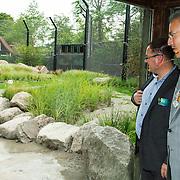 NLD/Rotterdam/20150626 - Paul de Leeuw opent nieuwe leeuwenverblijf Diergaarde Blijdorp, Paul de Leeuw legt het vlees neer  terwijl Cees Damen en burgemeester Aboutaleb toekijken