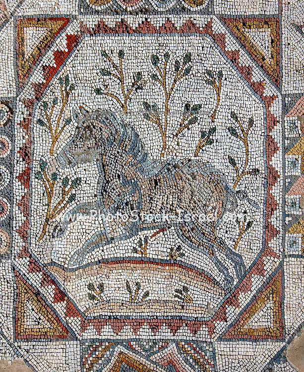 Segment of a mosaic floor of a monastery in bet guvrin, Israel, 6th century CE. depicting a hunting scene. From the Eretz Israel Museum AKA Haartz Museum, Tel Aviv, Israel