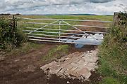 Fixing a hole by a field gate near Stranrear, Scotland