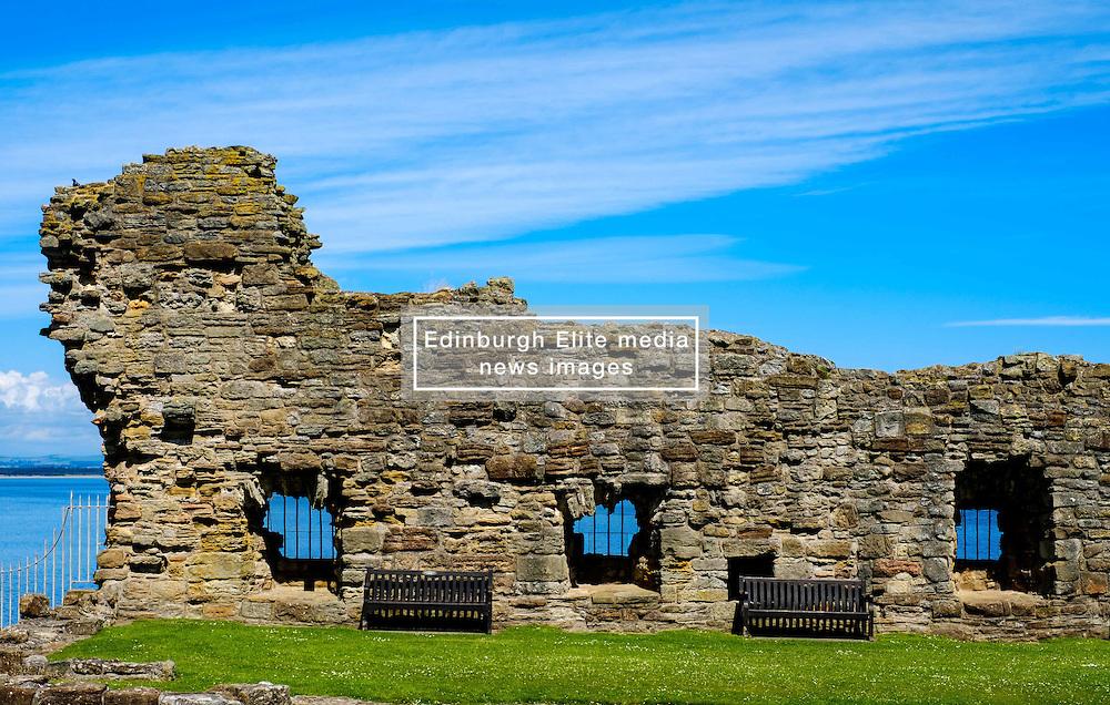 A ruined wall at St Andrews Castle, St Andrews, Fife, Scotland<br /> <br /> (c) Andrew Wilson   Edinburgh Elite media