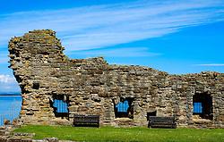 A ruined wall at St Andrews Castle, St Andrews, Fife, Scotland<br /> <br /> (c) Andrew Wilson | Edinburgh Elite media