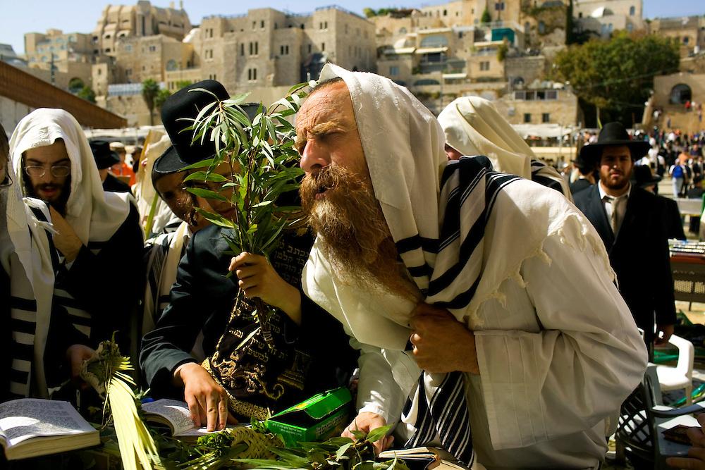 24/Octubre/2005. Israel. Jerusalén.<br /> Judíos ortodoxos rezando en el Muro de las Lamentaciones.<br /> <br /> © JOAN COSTA