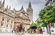 Horse car and Giralda tower, Seville, Andalusia, Spain