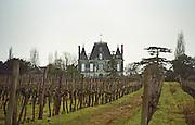 Vineyard. Chateau de Breuil. Coteaux du Layon, Anjou, Loire, France