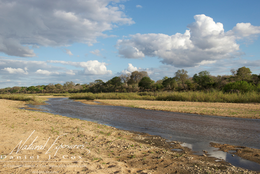 The Sand River in MalaMala Gamer Reserve, South Africa.