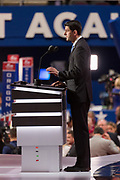 Speaker Paul Ryan leads the floor session to nominate  Donald Trump before the roll call during the second day of the Republican National Convention July 19, 2016 in Cleveland, Ohio. The delegates formally nominated Donald J. Trump for president after a state by state roll call.