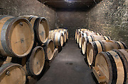 Oak barrel aging and fermentation cellar. Domaine Negociant Champy Pere & Fils, Beaune, Burgundy, France