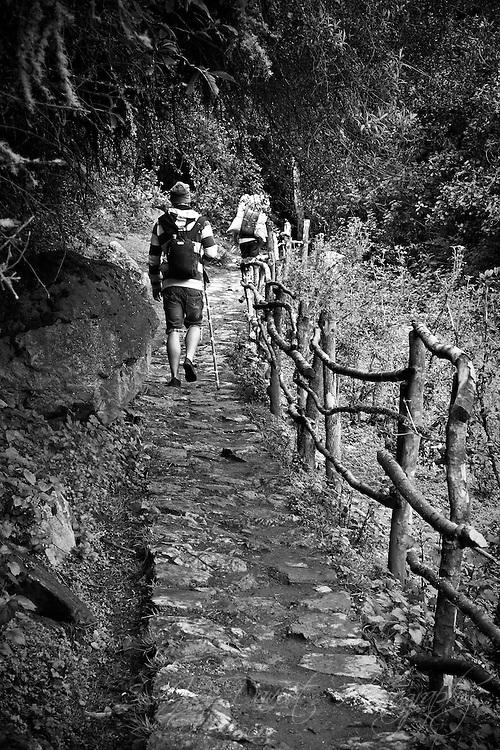Walking along the Inca Trail to Machu Picchu.