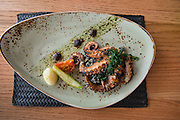 Grilled Octopus a la Hoja Santa with huitlacoche rice and grilled vegetables. Guzina Oaxaca, Polanco, Mexico DF