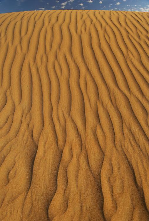sand desert sand dunes,  Dubai Desert Conservation Reserve, Dubai