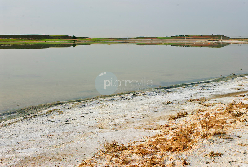 Laguna Grande. Quero. Toledo. Ruta de Don Quijote ©Antonio Real Hurtado / PILAR REVILLA