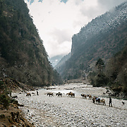 Crossing a stretch of the Mo Chuu river. On the trek going from Laya village to the beginning of the drivable road.