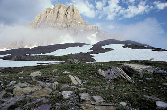 Glacier National Park, Montana. Clements surrounded by morning fog.Logan's Pass.Summer.