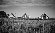 Black and White landscapes from the Netherlands.