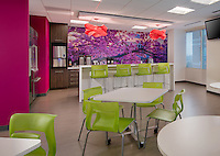 Interior design image of Sage corporate offices in Reston Virginia by Jeffrey Sauers of Commercial Photographics, Architectural Photo Artistry in Washington DC, Virginia to Florida and PA to New England