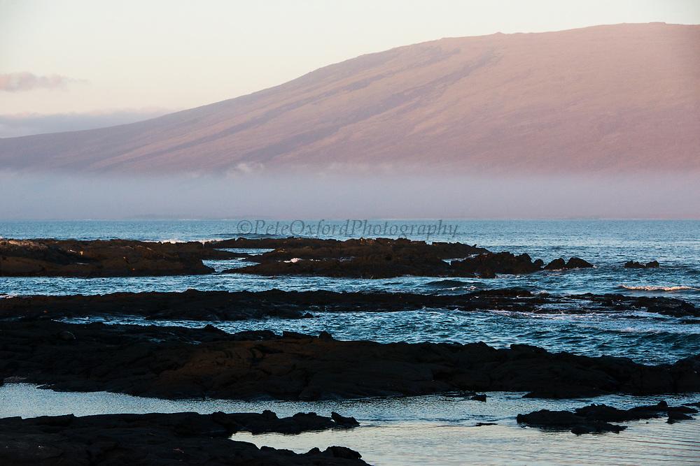 Darwin Volcano<br /> seen from Fernandina Island<br /> Isabela Island<br /> Galapagos<br /> Ecuador, South America