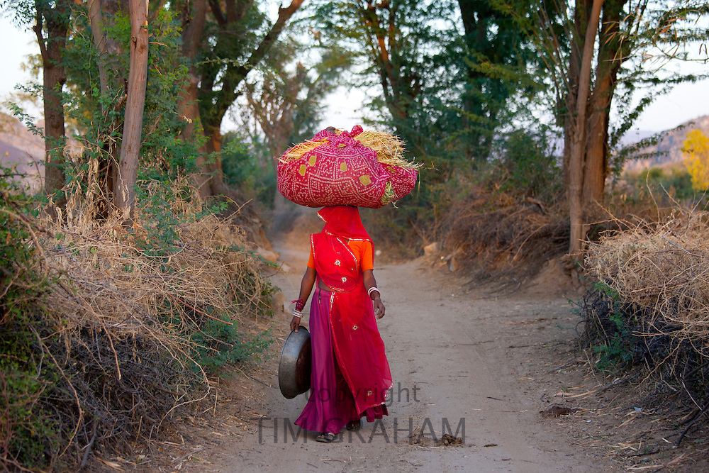 Agricultural worker returning home with hay after working in fields at Nimaj, Rajasthan, Northern India