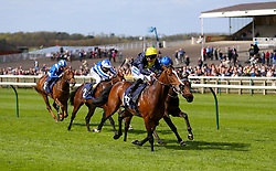 Porth Swtan ridden by jockey Paul Hanagan (right) on his way to winning the Alex Scott Maiden Stakes during day one of The Bet365 Craven Meeting at Newmarket Racecourse, Newmarket.