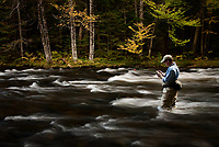 Jay Ericson choosing a fly while fly fishing for trout on the upper Connecticut River in northern New Hampshire.