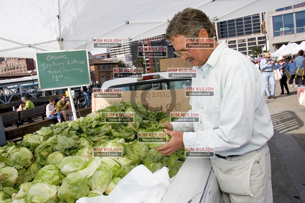 July 17, 2004--SAN FRANCISCO, CALIF.-- The historic San Francisco Ferry Building is home to specialty vendors and popular farmer's markets.  Dave Fredericks, from Winters, Calif, grows and sells organic lettuce($1.00 per head) at Saturday's Farmer's Market. Photo by Kim Kulish/