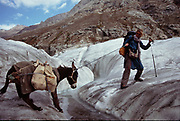 Crossing the Chattiboi glacier with a donkey and 2 kids, over crevasses. Matthieu and Mareile Paley trekking with a donkey named Clementine over 5 high passes across the Hindukush, between Pakistan and Afghanistan.