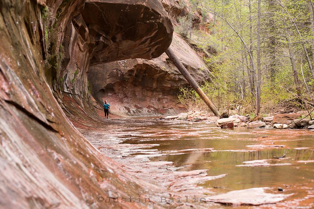 West Fork Trail near Sedona, Arizona.