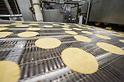 05 MAY 2008 -- PHOENIX, AZ: Corn tortillas on the production line at La Canasta in Phoenix. La Canasta uses 20,000 - 25,000 pounds of corn daily to make almost two million tortillas. Josie Ippolito, President of La Canasta, said the price of the corn she buys has shot up more than 50 percent since November, 2007 and is expected to double by the end of this year. This in addition to the 200 percent increase in the price of wheat flour she uses in other products at La Canasta.   Photo by Jack Kurtz