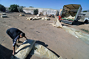 Spanje, El Ejido, 5-11-2019In dit deel van Andalucie wordt veel groente en fruit verbouwd wat zijn weg vindt via de export naar o.a. Nederland . Het wordt de zee van plastic genoemd omdat de kassen opgebouwd zijn van houten of metalen palen bedekt met zwaar plastic.  Werknemers voeren grote lappen plastic af wat van een kas die opnieuw bedekt gaat worden. Het plastic kan ingeleverd worden bij een afvalbedrijf wat het recycled.Komende week zijn er algemene verkiezingen in Spanje en de populistische partij Vox heeft hier een grote aanhang. In de kassen werken voornamelijk migranten uit Afrika, en arbeidmigranten uit Oost-Europa die een laag loon uitbetaald krijgen, tussen de 30 en 40 euro per 8 urige dag, werkdag, afhankelijk van de werkgever. Er wordt door de kaseigenaren en transportbedrijven goed verdiend maar de boeren vinden dat ze teveel negatieve aandacht krijgen in de media in noord-europa. Foto: Flip Franssen