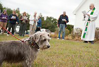 Phyllis Richards' dog Schroeder was one of pets blessed by Pastor Dave Dalzell during the Good Shepherd Lutheran Church blessing of the animals and soil celebration on Sunday morning.   (Karen Bobotas/for the Laconia Daily Sun)