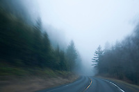 Scenic of empty road in Great Smokies Ntional Park, NC.
