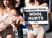 PETA Wool Protest 11th October 2018