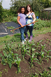 Woman and girl with hoe by sweetcorn patch