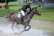 CLEVELAND ridden by Jesse Campbell taking part in the Equitrek CCI*** cross country on day three of the Bramham International Horse Trials 2017 at Bramham Park, Bramham, United Kingdom on 11 June 2017. Photo by Mark P Doherty.