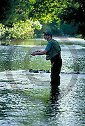 Outdoor recreation, Fishing Trout, Yellow Breeches Creek, Cumberland Co., PA