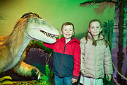 NO FEE PICTURES<br /> 17/12/17 Ryan Chaney 6 and sister Lauren 7, Clondalkin pictured at the prehistoric preview and official opening of Dinosaurs Around The World now open at the the Ambassador Theatre  for a limited time only. Embark on a globetrotting expedition around the world to discover the Age of Reptiles! With advanced animatronics, a multi-layered narrative, fossils, authentic casts, cutting-edge research and immersive design elements you'll experience the Age of Reptiles as it comes to life!  Dinosaurs Around the World is open daily to the public from 10 a.m. with last entry at 6pm for a limited time only. Tickets available from Ticketmaster.ie and from the Ambassador Theatre Box Office now. Visit www.mcd.ie for more. Pictures: Arthur Carron