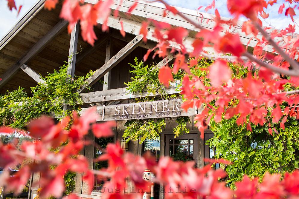 Skinner Winery, California foothills.