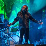 Robert Plant - Shrine Auditorium - June 23, 2013