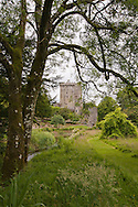 View from the gardens to the main keep at Blarney Castle, Ireland